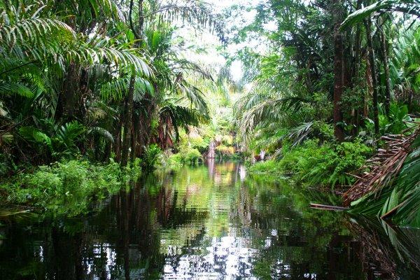 costa-rica-foto2