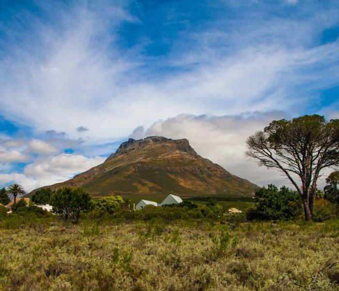 SUDAFRICA 8